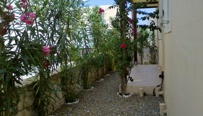 13 Back Garden3